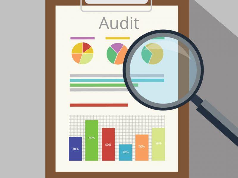 Citation audit